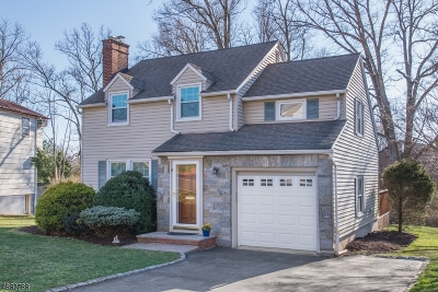 Livingston Twp. Single Family Home For Sale: 5 W Lawn Rd