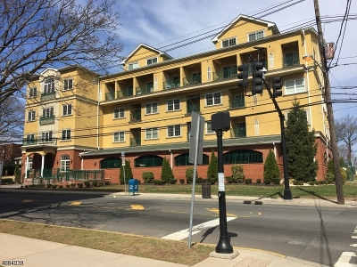 Elizabeth City Condo/Townhouse For Sale: 201-211 W Jersey St #424
