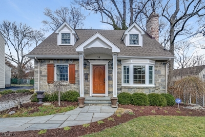Springfield Twp. Single Family Home For Sale: 14 Park Ln
