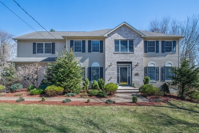Boonton Town Single Family Home For Sale: 665 Liberty St