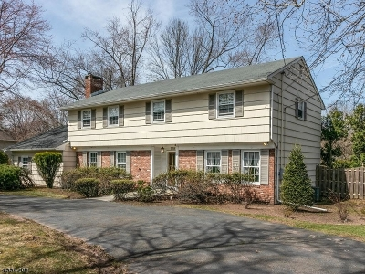 Scotch Plains Twp. Single Family Home For Sale: 1081 Raritan Rd