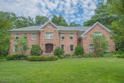 Millburn Twp. Single Family Home For Sale: 9 Troy Ln