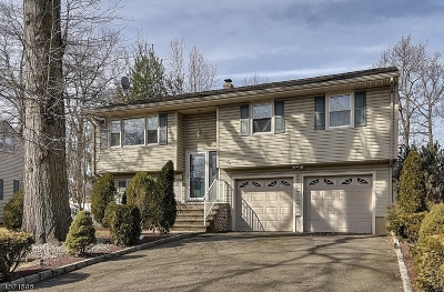 Essex County, Morris County, Union County Single Family Home For Sale: 2251 Elizabeth Ave