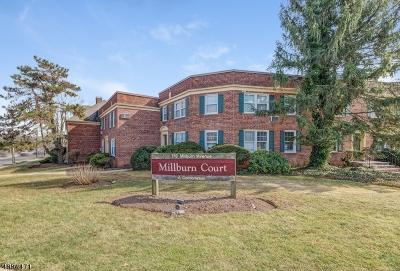 Millburn Twp. Condo/Townhouse For Sale: 176 Millburn Ave C1011