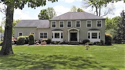 Randolph Twp. Single Family Home For Sale: 10 Gianna Ct
