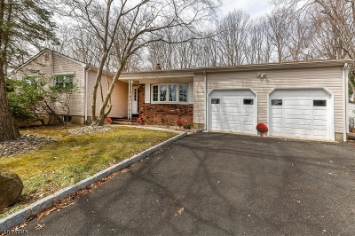 East Brunswick Twp. Single Family Home For Sale: 416 Old Stage Rd