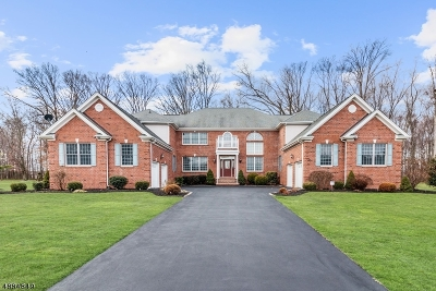 South Brunswick Twp. Single Family Home For Sale: 37 Summit Dr