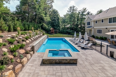 Millburn Twp. Single Family Home For Sale: 36 Troy Dr
