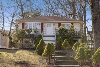 Roxbury Twp. Single Family Home For Sale: 45 Mansel Dr