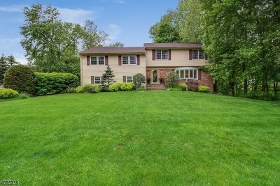 Millburn Twp. Single Family Home For Sale: 10 Westview Rd