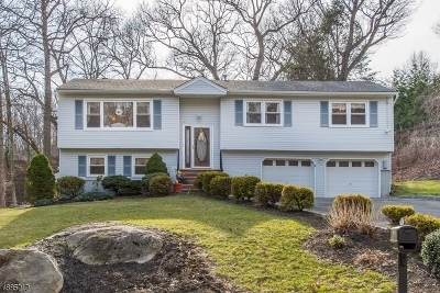 Parsippany-Troy Hills Twp. Single Family Home For Sale: 38 S Highview Rd
