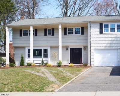 South Orange Village Twp. Single Family Home For Sale: 407 Irving Ave