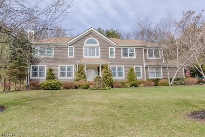 Randolph Twp. Single Family Home For Sale: 18 Mt Freedom Rd