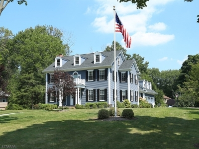 Morris Twp. Single Family Home For Sale: 58 Frederick Pl