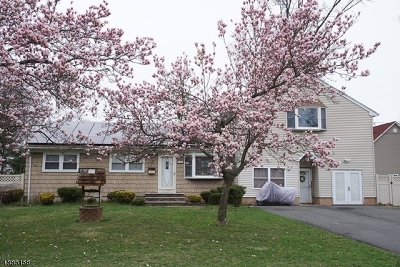 Edison Twp. Single Family Home For Sale: 264 W Prescott Ave