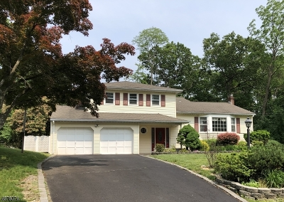 Parsippany-Troy Hills Twp. Single Family Home For Sale: 10 Spencer Ct
