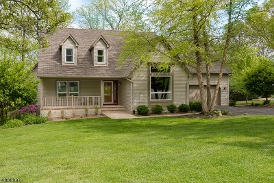 Randolph Twp. Single Family Home For Sale: 9 Eagle Ct