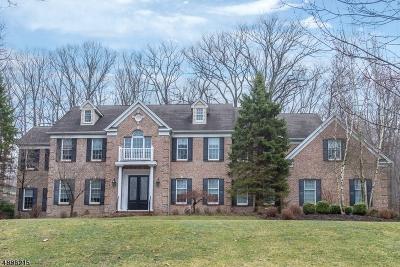 Randolph Twp. Single Family Home For Sale: 9 Dolly Bridge Rd