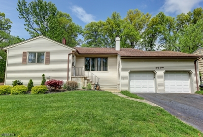 Springfield Twp. Single Family Home For Sale: 49 Christy Ln