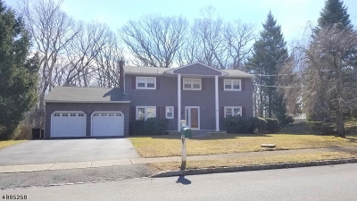 Parsippany-Troy Hills Twp. Single Family Home For Sale: 6 Crawford Rd