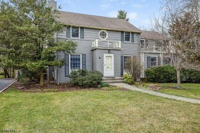 Summit City Single Family Home For Sale: 135 Canoe Brook Pky