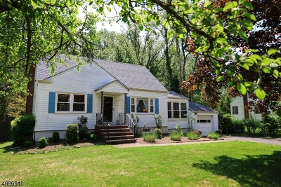Chatham Twp. Single Family Home For Sale: 819 River Rd