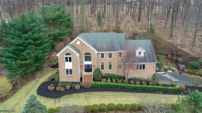 Randolph Twp. Single Family Home For Sale: 3 Waterview Ln