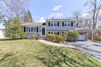Florham Park Boro Single Family Home For Sale: 12 Forest Dr