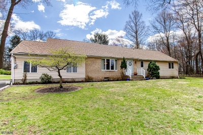 Scotch Plains Twp. Single Family Home For Sale: 1470 Cushing Rd