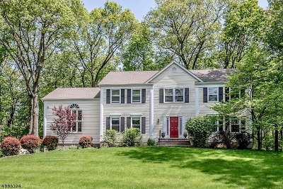 Randolph Twp. Single Family Home For Sale: 45 Longview Ave