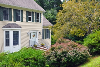 Morris Twp. Single Family Home For Sale: 4 Forest Dr