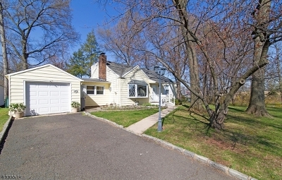 Rahway, Rahway City Single Family Home For Sale: 273 Plainfield Ave