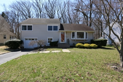 Westfield Town NJ Rental For Rent: $2,750