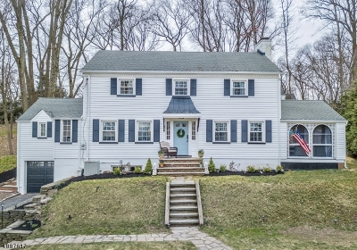 Morris Twp. Single Family Home For Sale: 16 Armstrong Rd