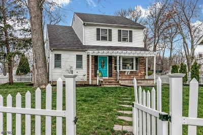 Westfield Town NJ Single Family Home For Sale: $469,000