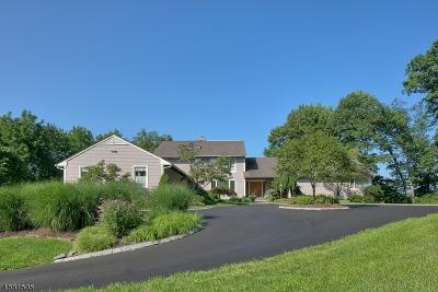 Morris Twp. Single Family Home For Sale: 70 Washington Valley Rd