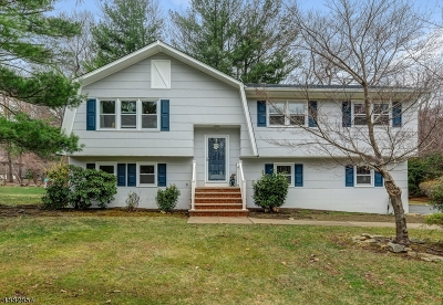 Randolph Twp. Single Family Home For Sale: 8 Black Birch Dr