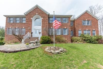 Denville Twp. Single Family Home For Sale: 14 Cedar Gate Rd