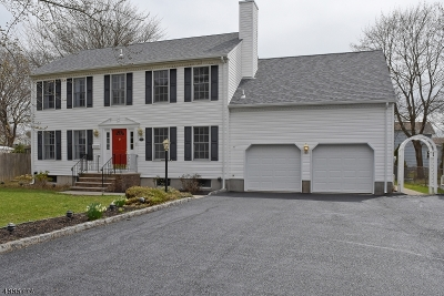 Boonton Town Single Family Home For Sale: 516 Green St