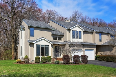 Morris Twp. Condo/Townhouse For Sale: 21 Raven Dr