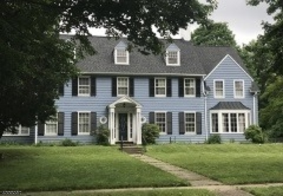 Plainfield City Multi Family Home For Sale: 432 Stelle Ave