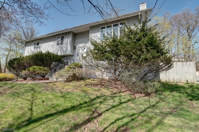 West Orange Twp. Single Family Home For Sale: 613 Mt Pleasant Ave