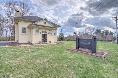 South Brunswick Twp. Single Family Home For Sale: 805 Ridge Rd