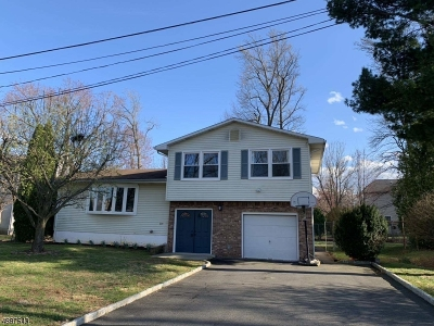 Edison Twp. Single Family Home For Sale: 235 Garfield St