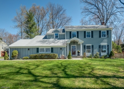 Berkeley Heights Twp. Single Family Home For Sale: 7 Raleigh Ct