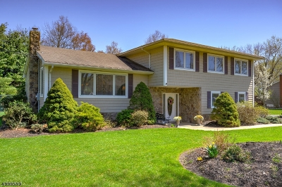 Hanover Twp. Single Family Home For Sale: 120 Griffith Dr