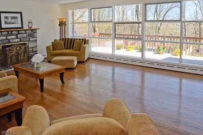 Randolph Twp. Single Family Home For Sale: 15 Valley View Ave