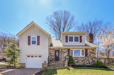 Randolph Twp. Single Family Home For Sale: 107 Mt Pleasant Tpke
