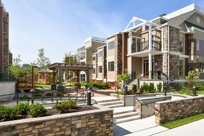 Essex County, Morris County, Union County Condo/Townhouse For Sale: 82 Franklin Pl Unit A2 #12