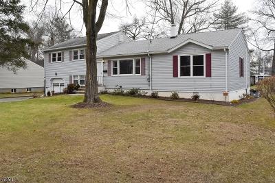 Florham Park Boro Single Family Home For Sale: 77 Edgewood Dr